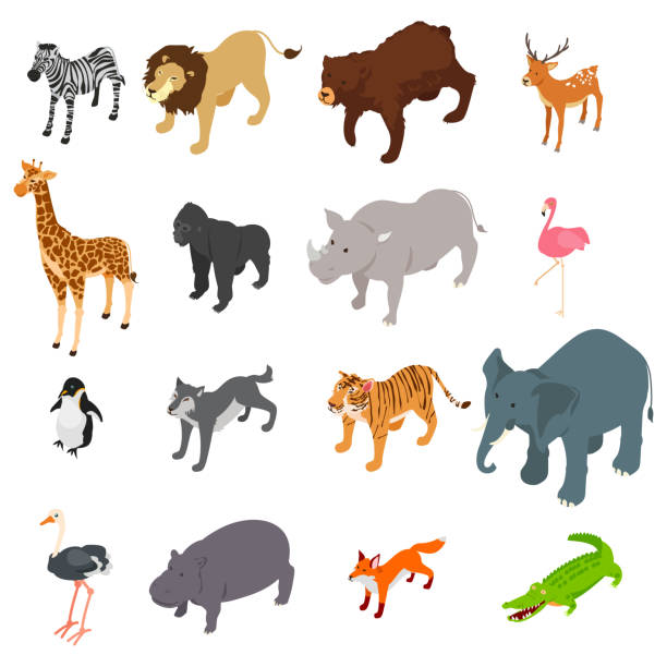 Wild Animals Isometric Illustration vector art illustration