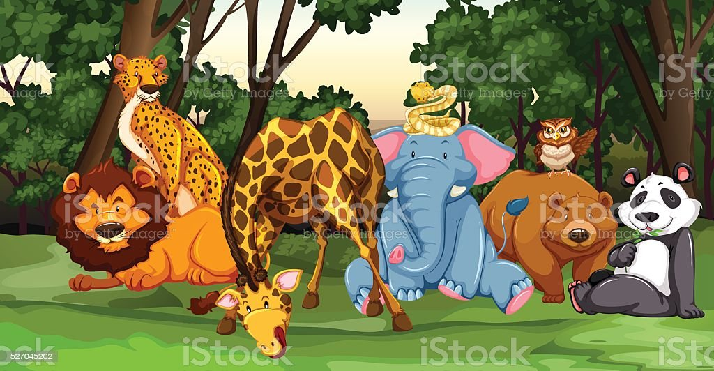 Wild animals living in the jungle vector art illustration