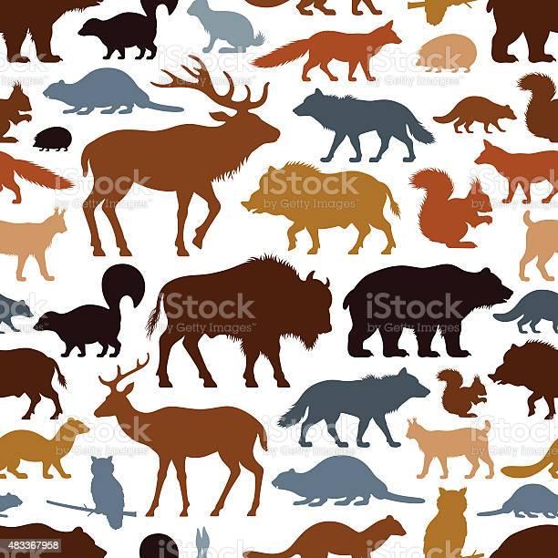 Wild animals pattern vector id483367958?b=1&k=6&m=483367958&s=612x612&h=wmesbzhhs059jir9z86bdzr4nbxyri80dqiixuxse1m=