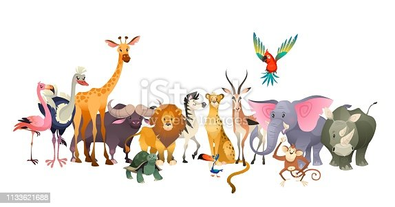 Wild animals. Safari wildlife africa happy animal lion zebra elephant rhino parrot giraffe ostrich flamingo cute zoo jungle vector poster