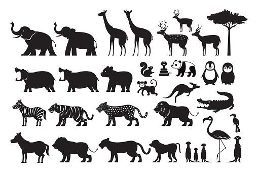 Wild Animals Silhouette Vector Set