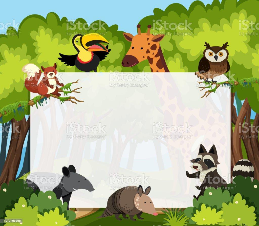 A wild animals template vector art illustration