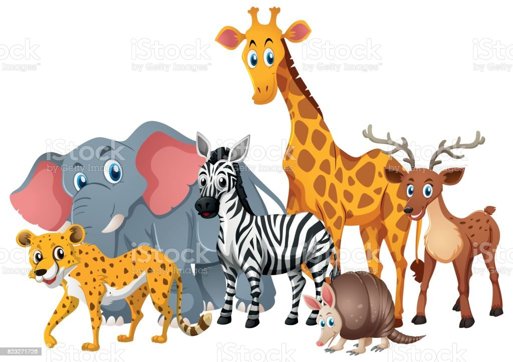 Zoo Animals Together Clipart Wild Animals To...