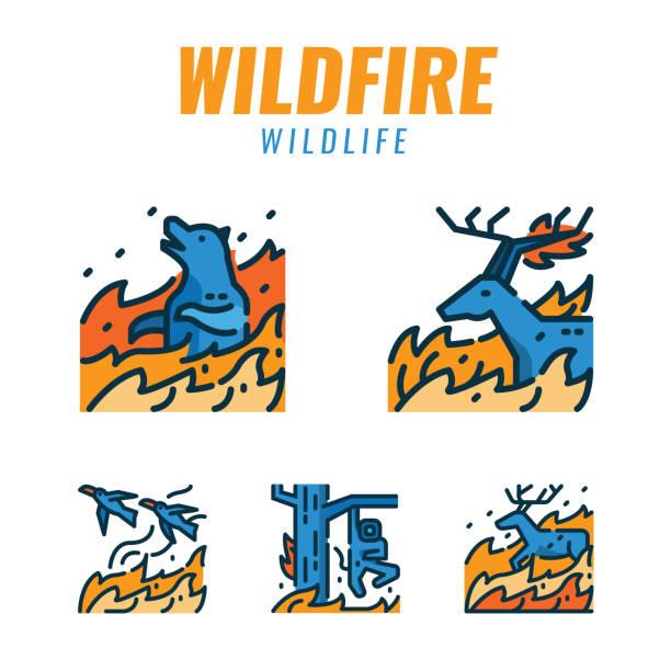 bildbanksillustrationer, clip art samt tecknat material och ikoner med vilda djur med skogsbränder. platta design ikoner. vektor illustration - skog brand