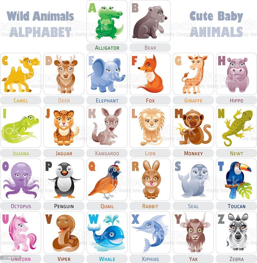 Bebê animais selvagens alfabeto - ilustração de arte em vetor