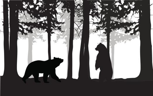 Wild Bears Vector Silhouette