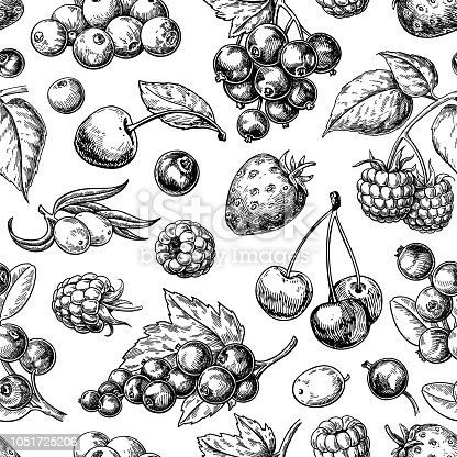 Wild berry seamless pattern drawing. Hand drawn vintage vector background. Summer fruit set of strawberry, cranberry, currant, cherry, srawberry, blueberry. Detailed organic food for menu, label, banner, tea or jam packaging