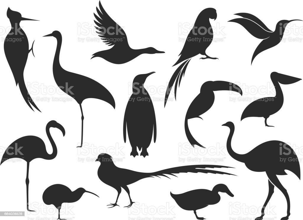 Wild Bird. Bird Silhouette vector art illustration
