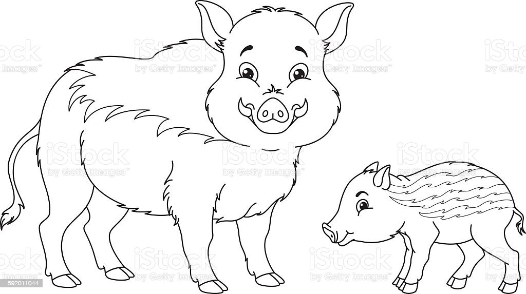 Wild Boar Coloring Page Stock Vector