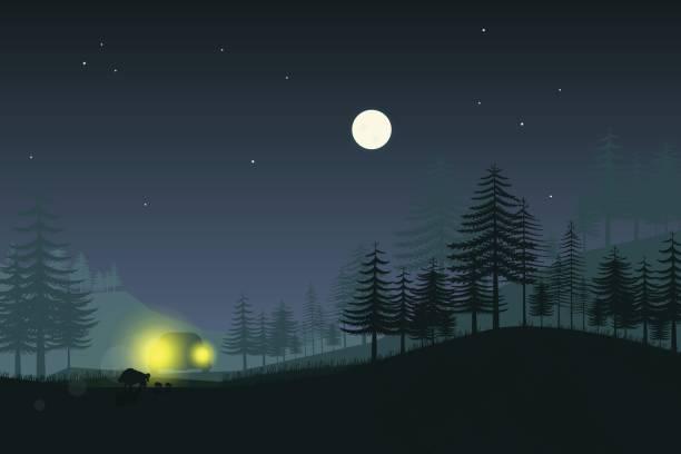 stockillustraties, clipart, cartoons en iconen met wild zwijn familie in het licht van auto koplampen - mist donker auto