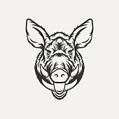 Wild boar head illustration