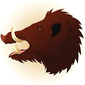 istock Wild boar 165730024