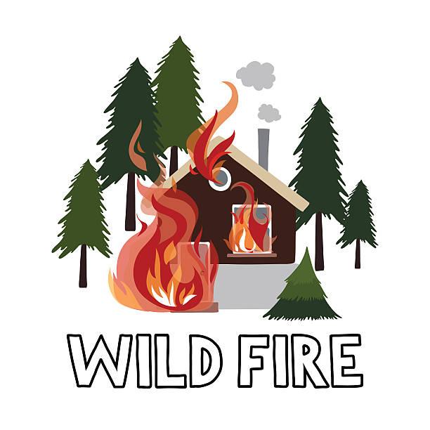 bildbanksillustrationer, clip art samt tecknat material och ikoner med wild fire in a forest. burning house. - skog brand