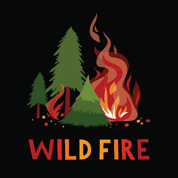 bildbanksillustrationer, clip art samt tecknat material och ikoner med wild fire in a forest. - skog brand