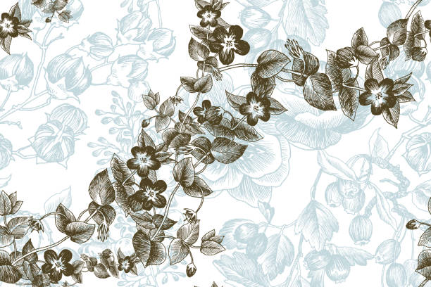野生の花の枝シームレスなパターン。●ヴィンテージ植物手描き下ろしイラスト。ベクターデザイン。グリーティングカード、結婚式の招待状、エコ製品のパターン、化粧品のために使用す� - ボタニカル点のイラスト素材/クリップアート素材/マンガ素材/アイコン素材