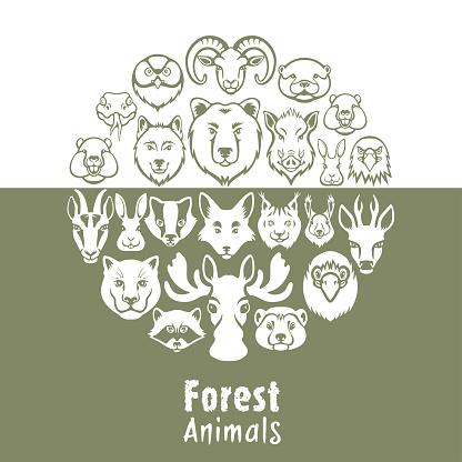 Wild forest animals collage