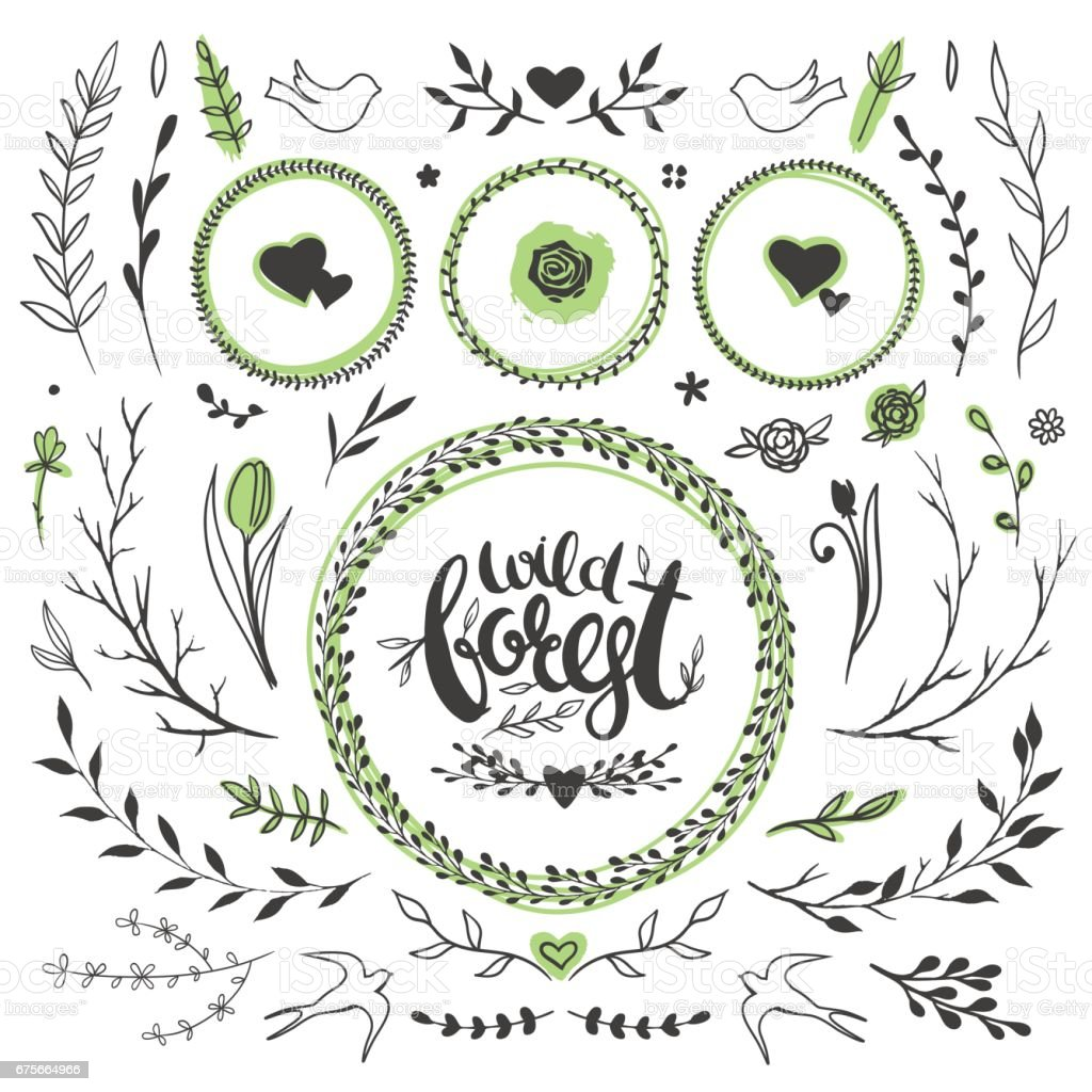 wild forest floral set royalty-free wild forest floral set stock vector art & more images of animal wildlife