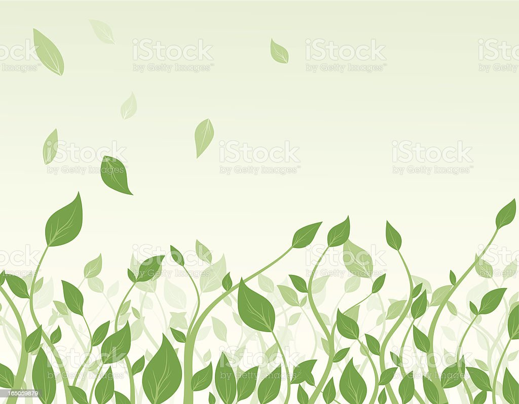 Wild freshness royalty-free stock vector art