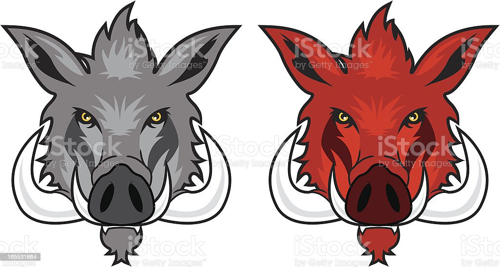 Wild Hog in Grey and Red vector art illustration