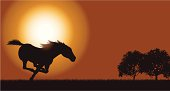 """Silhouette background illustration of a wild horse galloping at sunset. Check out my """"Vectors Animals & Insects"""" light box for more."""
