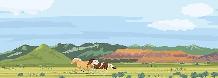 Wild Horse Running. Utah Mountains