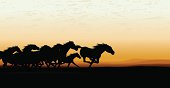 Wild Horse Stampede Background