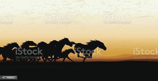 Wild horse stampede background vector id477886921?b=1&k=6&m=477886921&s=612x612&h= e oofanc2xye6h8rm 1fjdpqgaoucs mam nrfoshm=