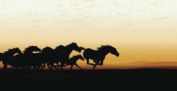 Wild Horse Stampede fond - Illustration vectorielle