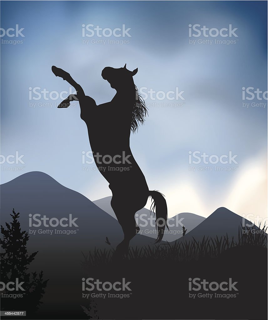 Wild horse vector art illustration