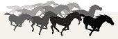 Wild Horses Stampede - Silhouette Background