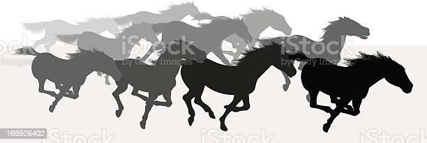 Wild horses stampede silhouette background vector id165926402?b=1&k=6&m=165926402&s=612x612&h=dletqras3fnvyx7dtnsbm3zpg8is l5ywqk3ch6yep0=