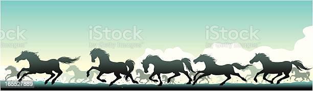 Wild horses vector id165527889?b=1&k=6&m=165527889&s=612x612&h=0wwpay7u9jh0exrrufxnzd vs4ol3xevdv6cmsxqh5i=