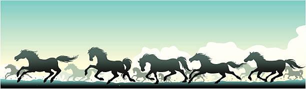 Wild cavalos - ilustração de arte em vetor