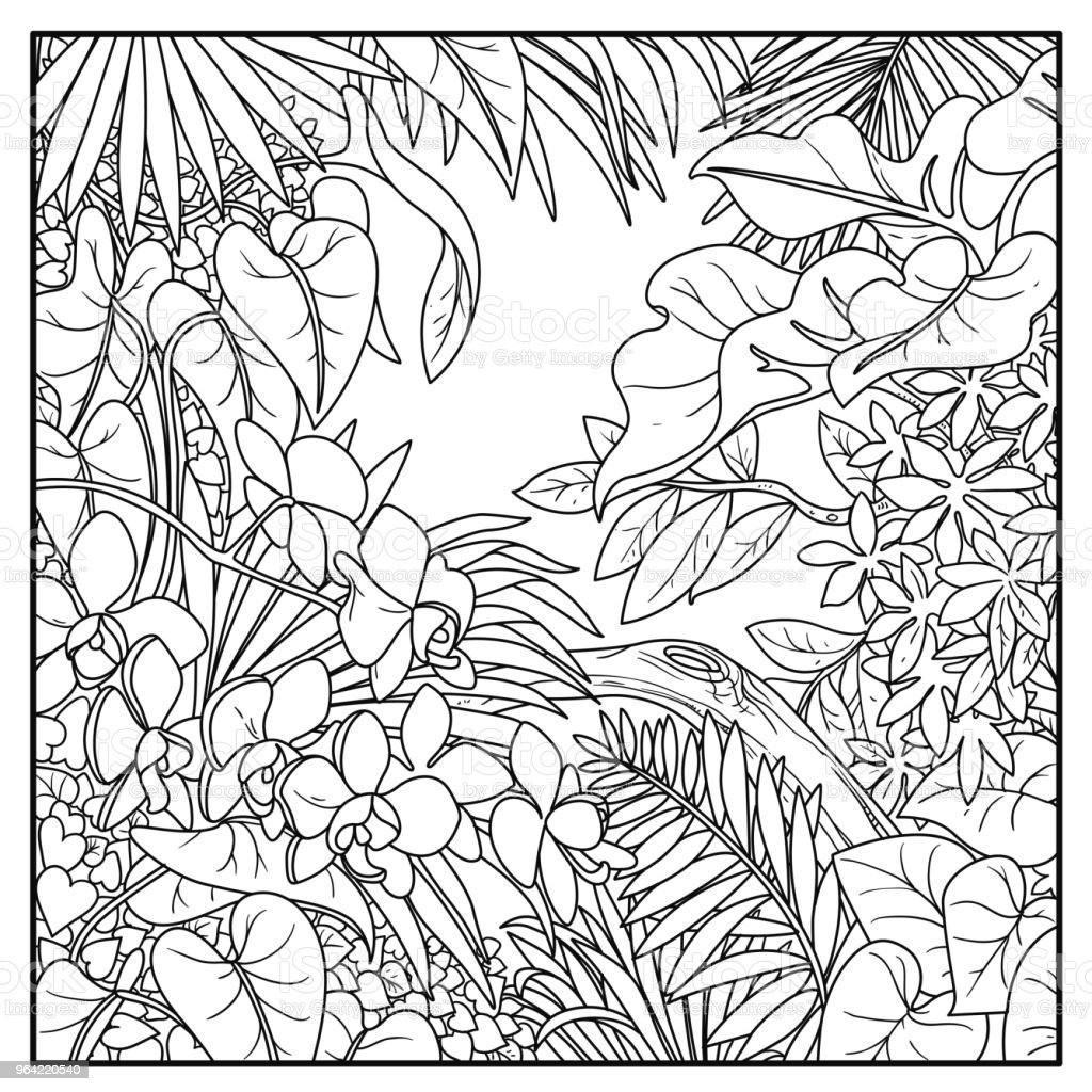 Wild Jungle Black Contour Line Drawing For Coloring On A ...