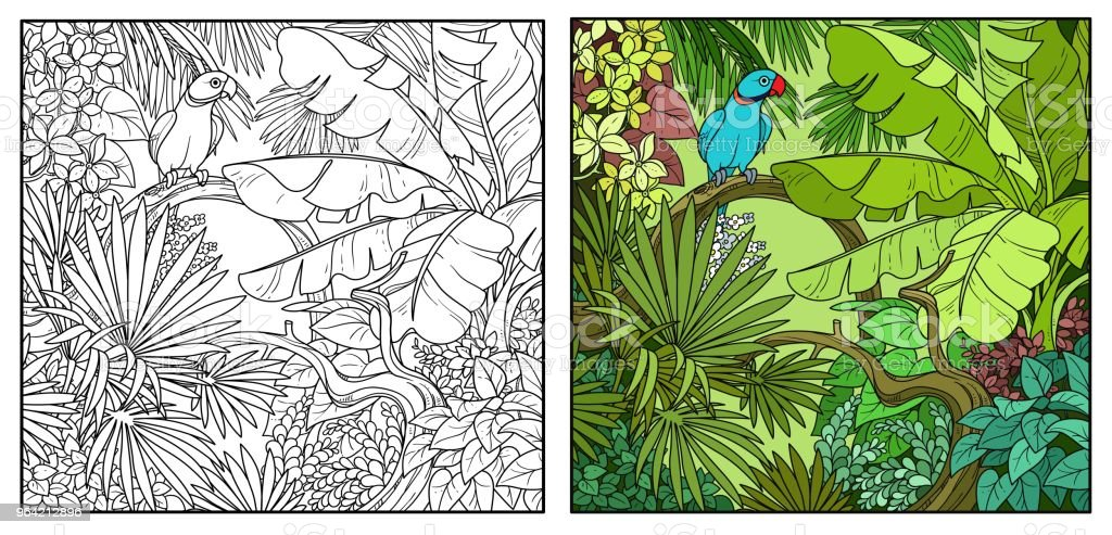 Ilustración de Salvaje Selva Con Indio Anillado Loro Encaramado En ...