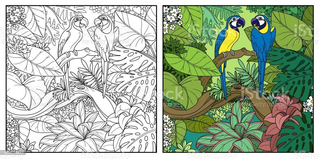 Wilden Dschungel Mit Zwei Papageien Ara Sit Auf Ast über Wald See ...
