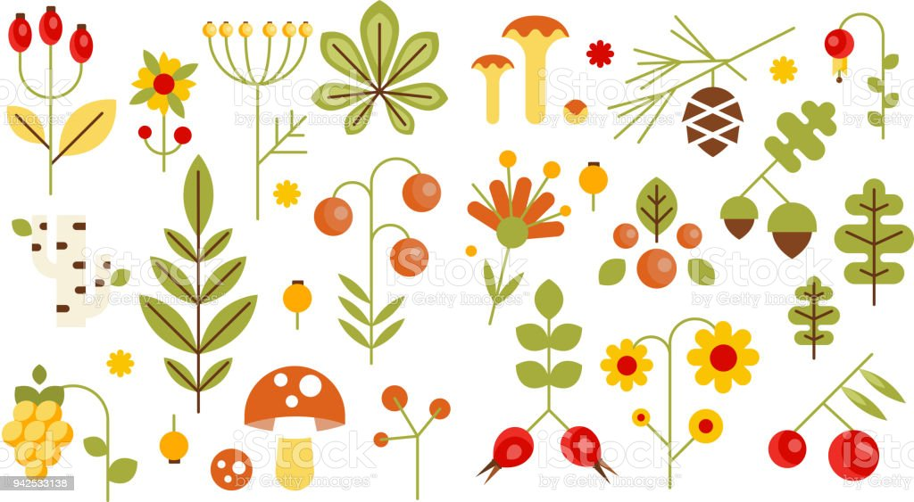 Wilde Blätter, Beeren und Pilze Set, Wald Elemente Konzept Vektor-Illustrationen – Vektorgrafik
