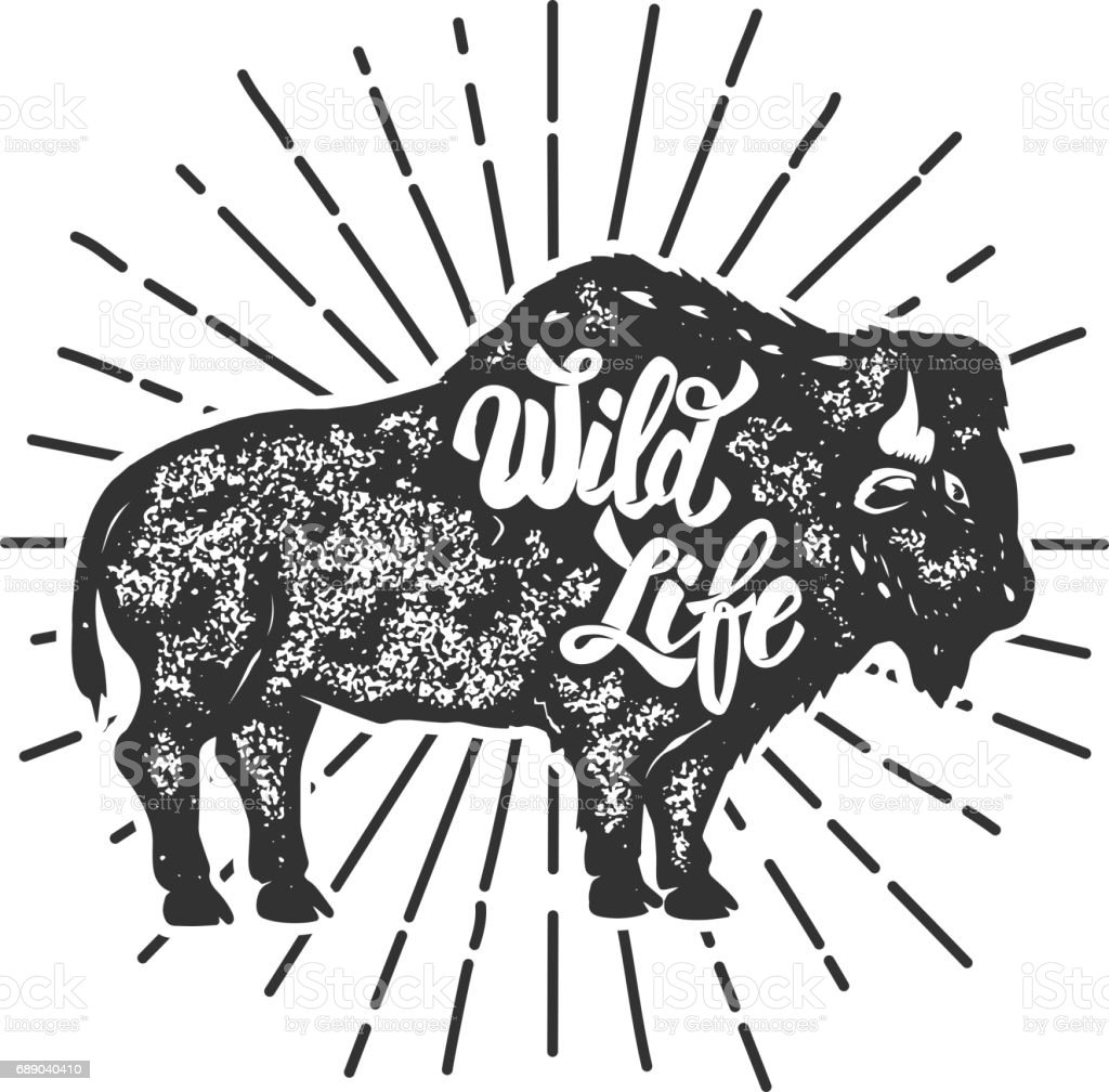 Wild Life. Grunge style bison silhouette isolated on white background. Design elements for label, emblem, sign. Vector illustration. vector art illustration