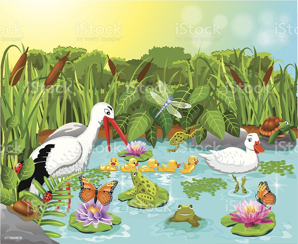 wild life in the pond royalty-free wild life in the pond stock vector art & more images of animal