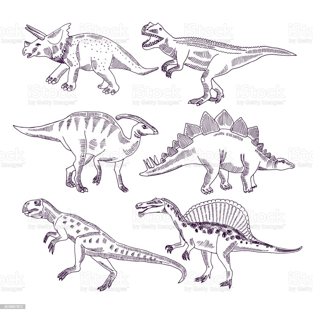 Wild life with dinosaurs. Hand drawn illustrations set of t rex and other dino types vector art illustration