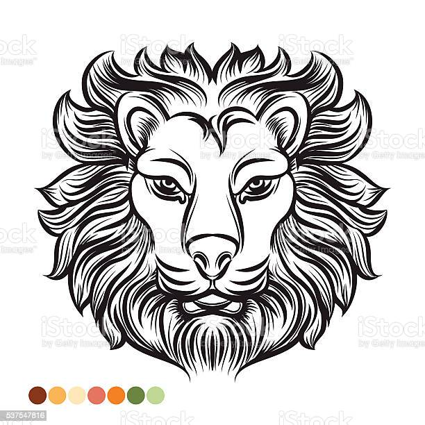 Colorear Libro León Animal Descargar Vectores Gratis