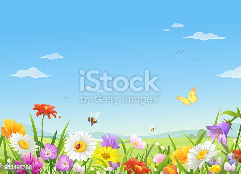 A meadow full of beautiful flowers, bees and butterflies in spring or summer. In the background is a landscape with hills and a bright blue, cloudy sky. Vector illustration with space for text.