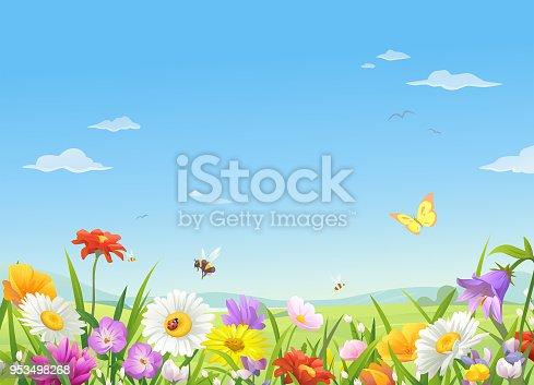 istock Wild Meadow Flowers Under A Blue Sky 953498268