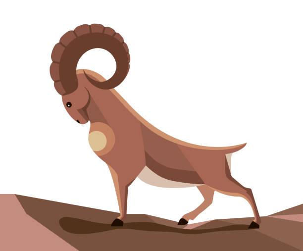 wild mountain goat - steinpfade stock-grafiken, -clipart, -cartoons und -symbole