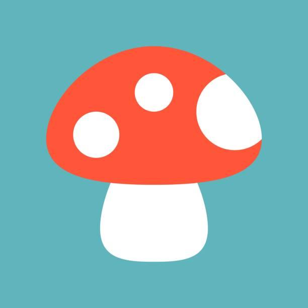 야생 버섯 아이콘 - 버섯 stock illustrations