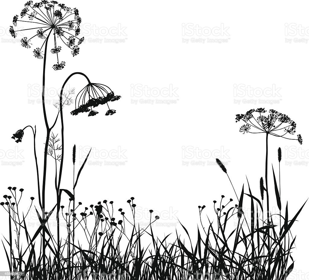 Wild Plants Silhouette royalty-free wild plants silhouette stock vector art & more images of botany