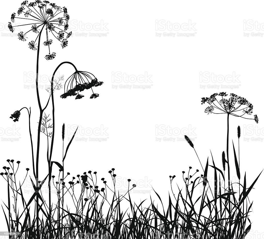 Wild Plants Silhouette royalty-free stock vector art