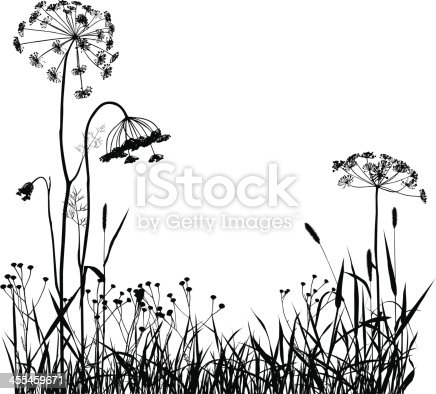 Wild Plants Silhouette Gm455459671 15980158 on herb border