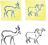 wild ram and gazelle on post it notes