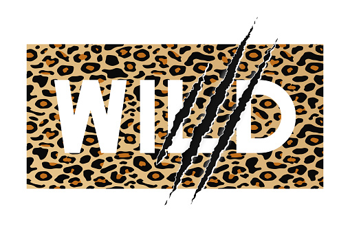 Wild slogan on leopard skin background with claw scratch.